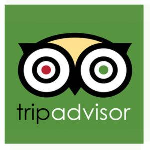 large Trip Advisor logo